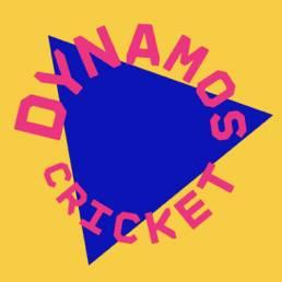 Dynamos Cricket Sussex